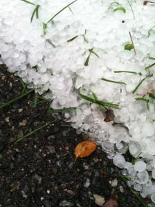 Hail (2)