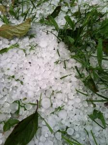 Hail (4)