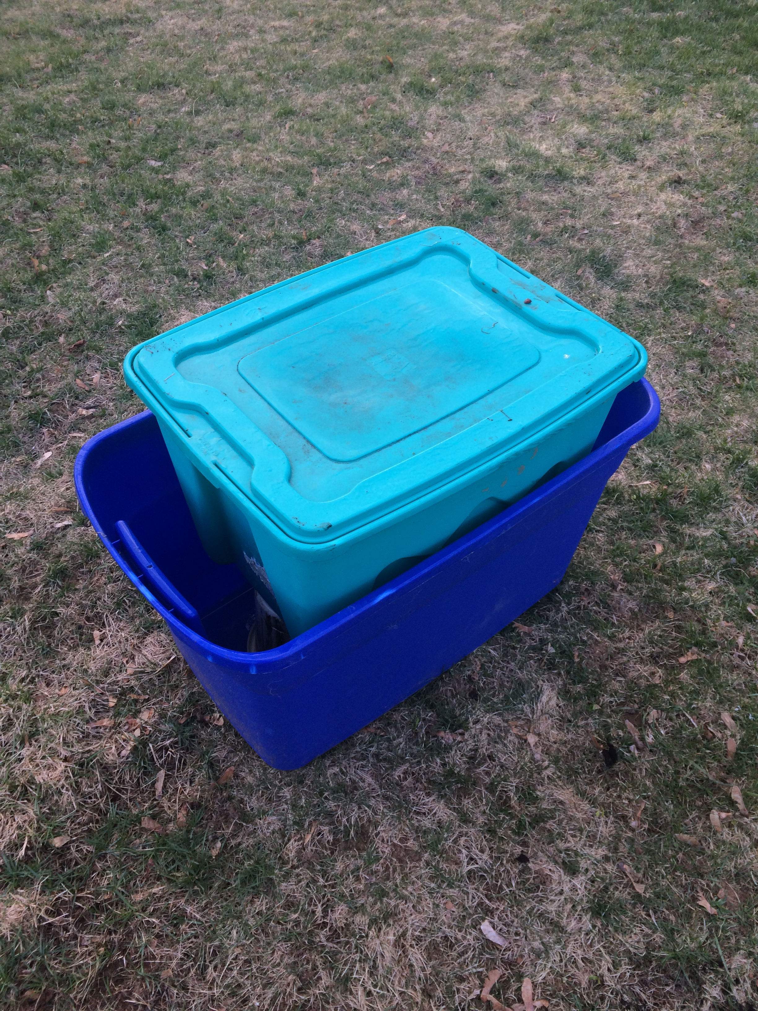 How to Make a Worm Compost Bin at Home in 8 Easy Steps | A CoLoRfUl ...